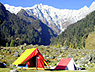apple-nature-camps